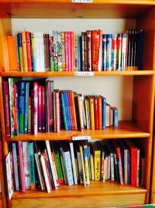 biblioteca casera